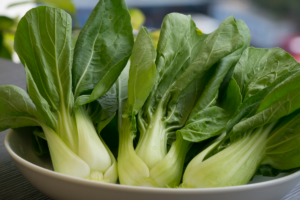 Bok Choy green lettuce